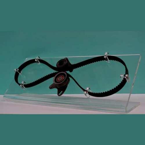 espositore plexiglass cinghia di distribuzione