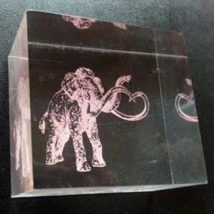 Presse-papiers plexiglas gravé coloré réalisé comme une brique carrée,, une gravure d'animal colorée, pour décorer, récompenser, offrir....