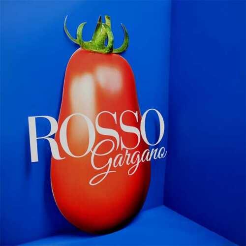 Impression grand format sur plexiglass formé découpe tomate