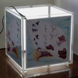 Lampada cubo porta foto in plexiglass con l'aggiunto una 2a parete di plexiglass su i 4 lati. Così puoi inserire quello che vuoi nelle tasche