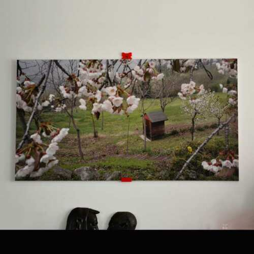 Quadre Photo PVC Light et impression décor printemps en colline