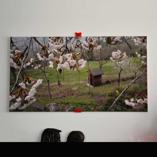 Quadro Arredo stampa pannello pvc light la primavera in collina