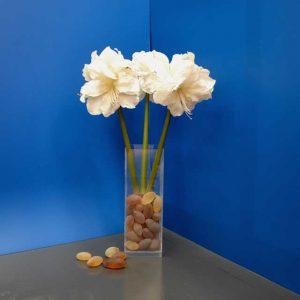Vase de sol plexiglass à fond épais stable